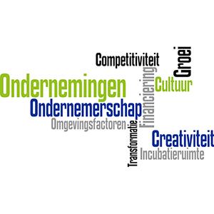 Agentschap Innoveren & Ondernemen vereenvoudigt de kmo-portefeuille, subsidies voor opleiding & advies